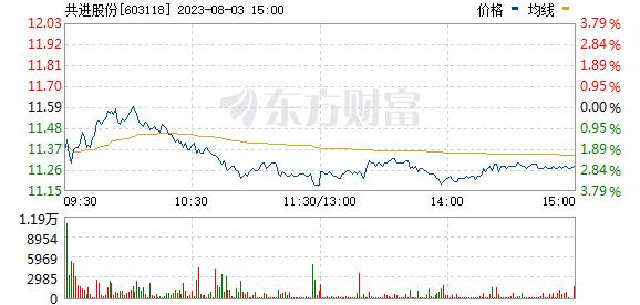 共进股份(603118)