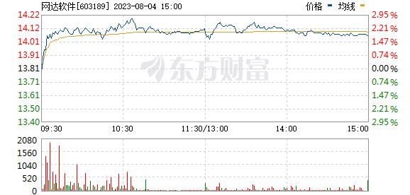 网达软件(603189)
