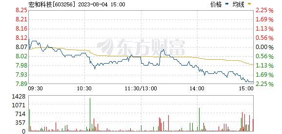 宏和科技(603256)