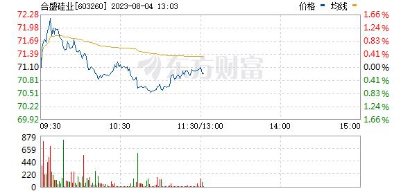 合盛硅业(603260)