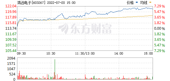 鸿远电子(603267)