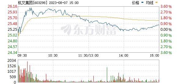 杭叉集团(603298)