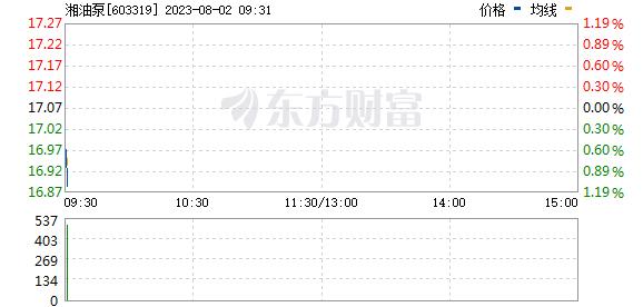 湘油泵(603319)