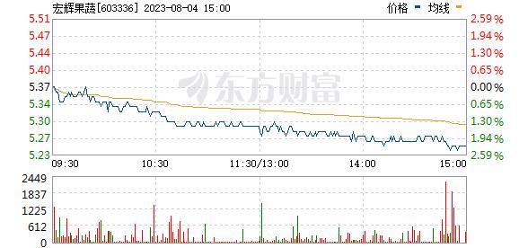 宏辉果蔬(603336)