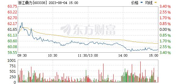 浙江鼎力(603338)