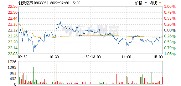 新天然气(603393)