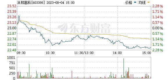 邦宝益智(603398)