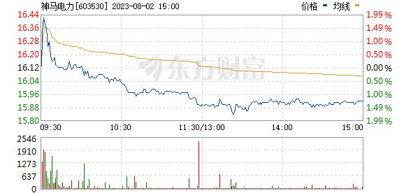 神马电力(603530)