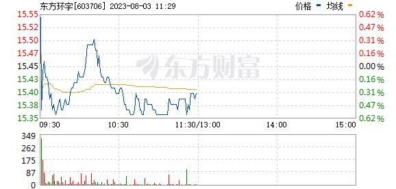 东方环宇(603706)