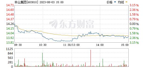 ST丰山(603810)