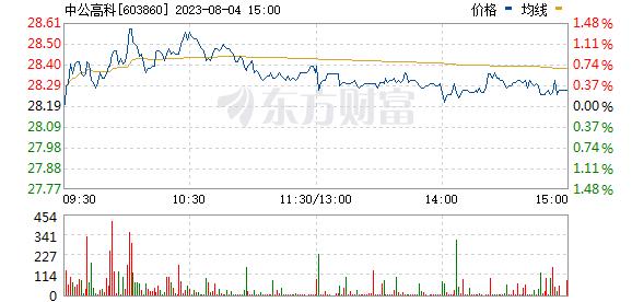 中公高科(603860)