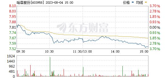 哈森股份(603958)