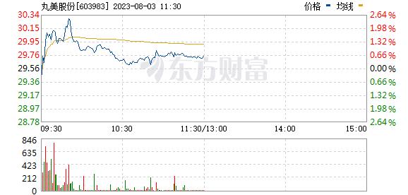 丸美股份(603983)