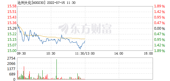 沧州大化2月25日快速反弹
