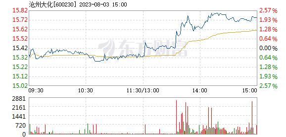 沧州大化8月20日快速回调