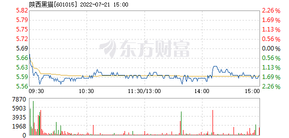 陕西黑猫1月11日盘中跌幅达5%