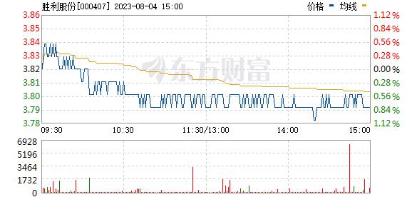胜利股份(000407)