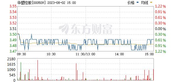 华塑控股(000509)