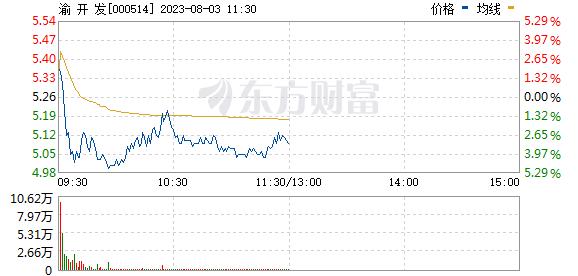 渝开发(000514)