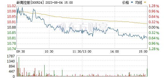 岭南控股(000524)