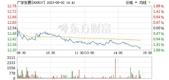 广宇发展(000537)