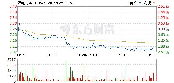 粤电力A(000539)