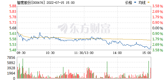 智度股份(000676)