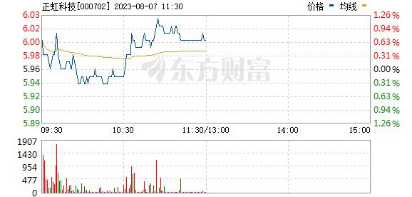 正虹科技(000702)