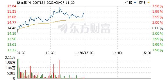 锦龙股份(000712)
