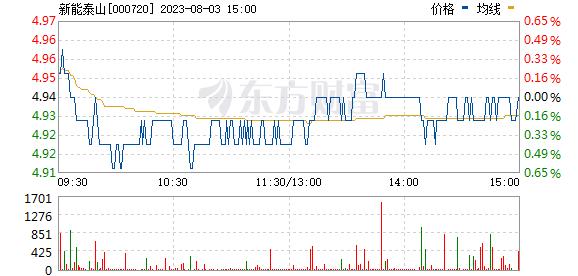 新能泰山(000720)