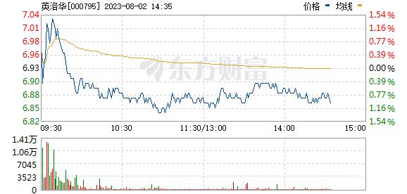 英洛华(000795)