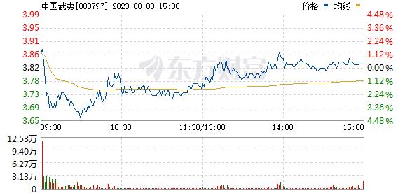 中国武夷(000797)