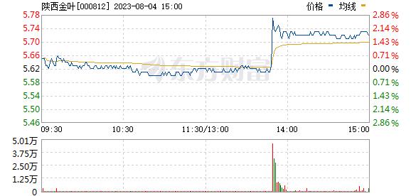 陕西金叶(000812)