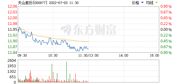 天山股份(000877)