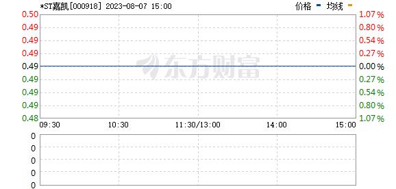 嘉凯城(000918)
