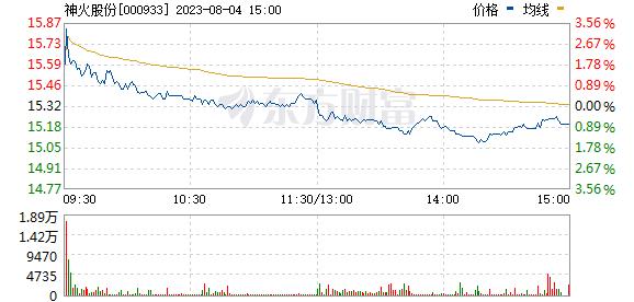 *ST神火(000933)