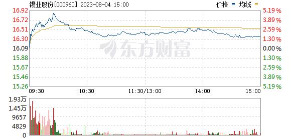 锡业股份(000960)