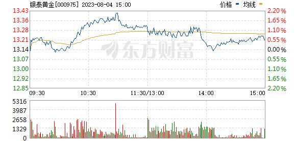 银泰资源(000975)