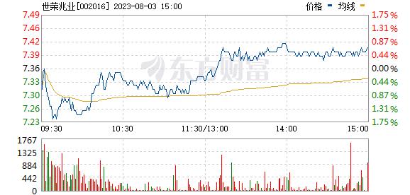 世荣兆业(002016)