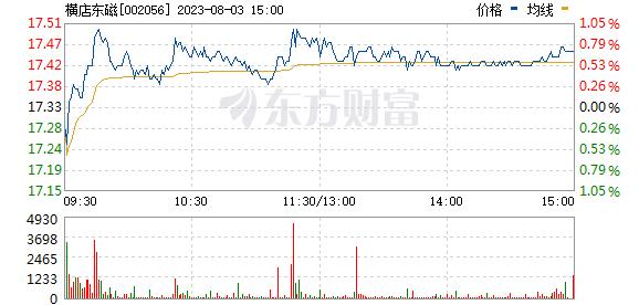 横店东磁(002056)