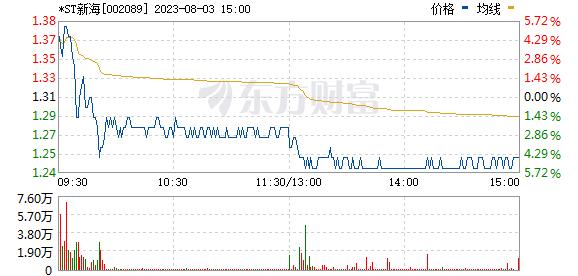 新海宜(002089)