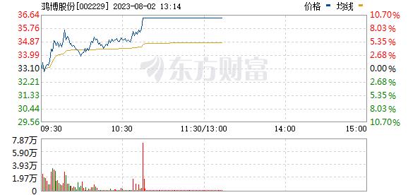 鸿博股份(002229)