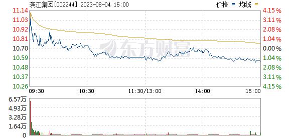滨江集团(002244)