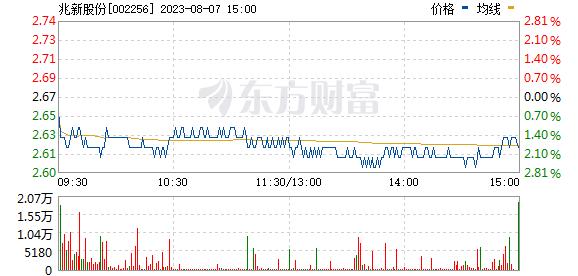 兆新股份(002256)