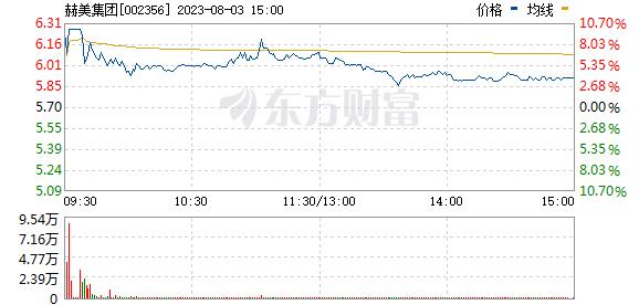 赫美集团(002356)