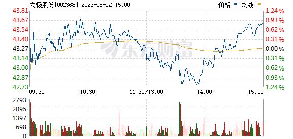 太极股份(002368)