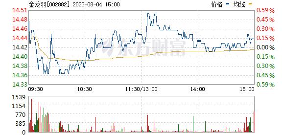 金龙羽(002882)