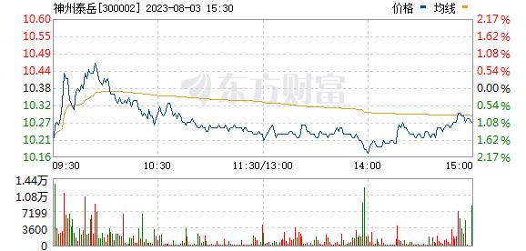 神州泰岳(300002)