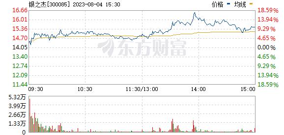银之杰(300085)