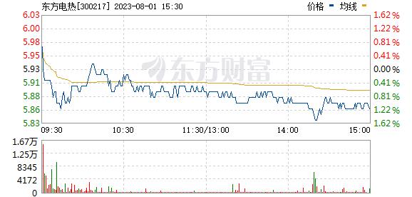 东方电热(300217)
